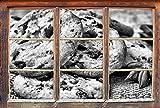 Monocrome, Süße Cookies mit Schokostückchen Fenster im 3D-Look, Wand- oder Türaufkleber Format: 62x42cm, Wandsticker