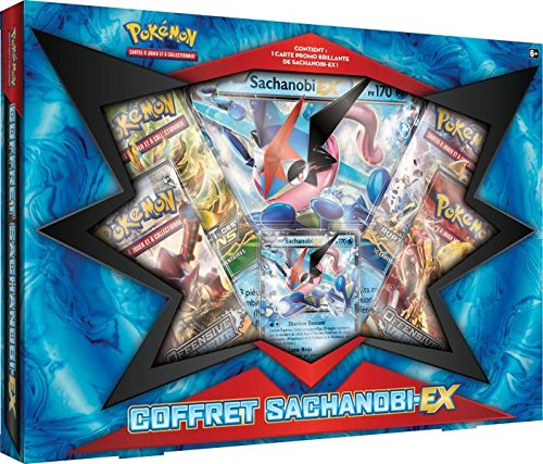 Pokemon - FR - Coffret Noël Sachanobi Ex