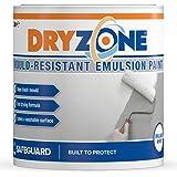 Dryzone anti schimmel verf 1 stralend wit - Schimmelbestendig voor 5 Jaar, 10m² - 12m² dekking