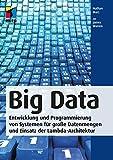 Big Data: Entwicklung und Programmierung von Systemen für große Datenmengen und Einsatz der Lambda-Architektur (mitp Professional)