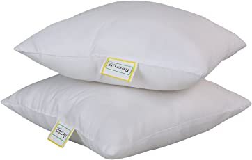 "Recron Certified Dream Microfibre Cushion, 2 Piece (16""x16"", White)"