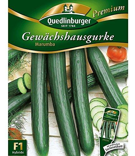 Gewächshaus-Gurke 'Marumba', 1 Tüte Samen