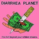 Songtexte von Diarrhea Planet - I'm rich beyond your wildest dreams.