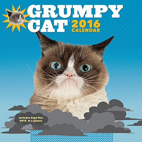 2016 Wall Calendar: Grumpy Cat