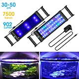 BELLALICHT Rampe LED pour Aquarium Éclairage Aquarium LED 31W 2 Mode RGBW Lumieres Lampe LED pour 90-110CM Aquarium - 7500K