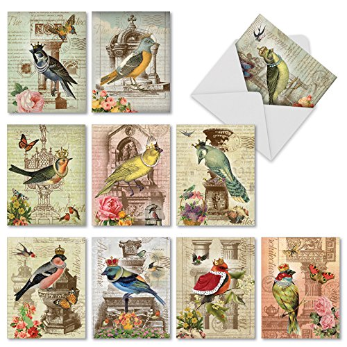Royal Birds all-occasion Witz Grußkarte 10 Assorted Blank Note Cards (M2343OCB) -