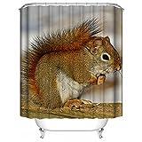 HUIYIYANG Benutzerdefinierte Duschvorhang,Natur-Tier-Tierthema-lustiges Eichhörnchen Wasserdichter Anti-Mehltau Gewebe Polyester Badezimmer Duschvorhang 60