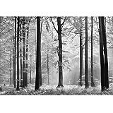 Foto-Tapete / Wandbild, Motiv