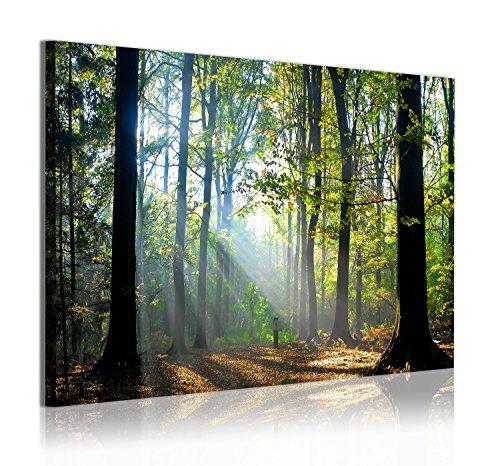 Dekoarte 312 - Cuadro moderno en lienzo de 1 pieza, paisaje de naturaleza con bosque y áboles, 120x80cm
