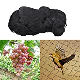 Sinbide® Vogelschutznetz Weinbau Vogelnetz Schwarz Volierennetz Vogelabwehr Dach Schutznetze Gegen Vögel Vogel Netze Netz Gegen Vögel Auffangnetz für Obst Schwarz (15*15m)