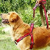 Cuerda Cadena de perros Lino Perros Lino Pet Pecho Correa