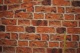 1 m * 1,4 m Stoff Ziegelwand Baumwolle - Steine Ziegel Haus Deko Mauer rot Backstein Patchwork / Baumwolle & Polyester - z.B. Bettwäsche / Möbelbezugsstoff / Vorhänge - Möbelstoff