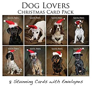 dog christmas card pack 8 canine xmas cards with. Black Bedroom Furniture Sets. Home Design Ideas