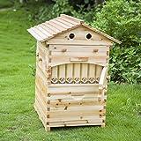 Automatische Flow Bee Hive, Honig FOW Beehive House mit 7PCS Flow Frames