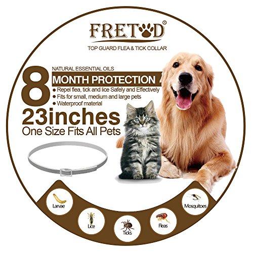 FlohHalsband Zeckenhalsband für Hunde Katzen – mittel gegen floh zecken beim mittel kleine große welpen