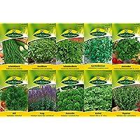 10 variedades   Surtido de semillas de hierbas   adecuado para principiantes   ahora precio especial de invierno