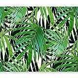 murando - Fototapete Blätter grün 400x280 cm - Vlies Tapete - Moderne Wanddeko - Design Tapete - Wandtapete - Wand Dekoration - Tropisch Pflanzenmotiv b-B-0280-a-a
