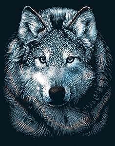 Scraperfoil Kit 8 « X 10 »-Wolf