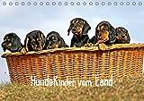 Hundekinder vom Land (Tischkalender 2019 DIN A5 quer): Hundekinder sind Herzen auf vier Pfoten und schenken Lebensfreude jeden Tag. (Monatskalender, 14 Seiten ) (CALVENDO Tiere)