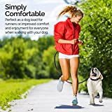 Hands Free Dog Lead | Running Lead | Shock Absorbing, Extendible Dual Bungee | Adjustable Waist Belt for Runners, Jogging, Walking and Shopping | Gift for Men and Women
