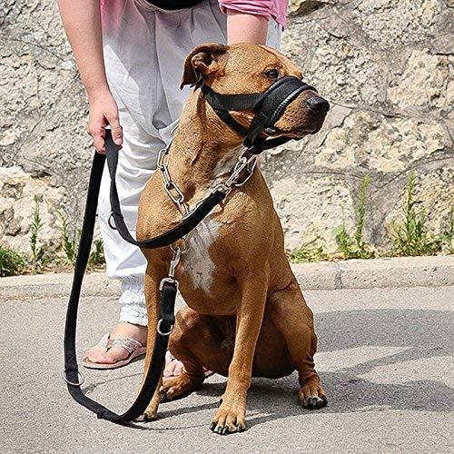 Hunde Maulkorb Hundefreundlich Maulkorb Leicht Fit für Hunde Verstellbare Hund Maulkorb Maulkörbe Anti-Biss Barking Komfortable Maulkorb Maske -