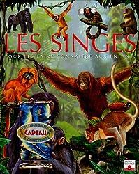 Les singes : Pour les faire connaître aux enfants (1Jeu)