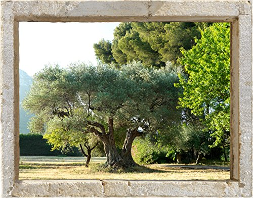 Plage 800402 adesivo per pareti trompe l'oeil finestra, oliva, 60 x 75 cm