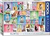 Eurographics 15.240–2.423,2cm Yoga Dogs 'Puzzle (1000Teile)