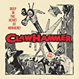Claw Hammers - Best Reviews Guide