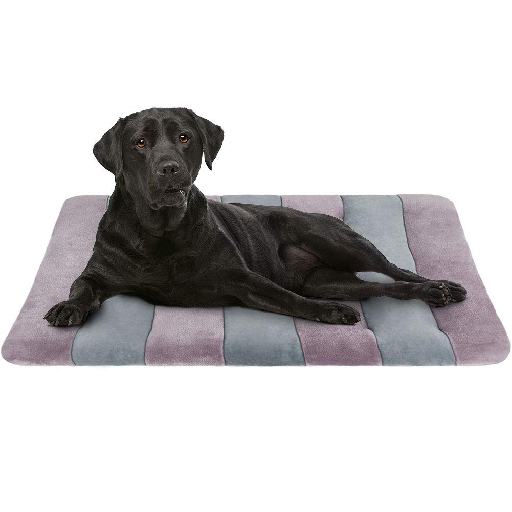 JoicyCo Dog Bed Crate Pad Mat 364247