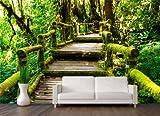 Vliestapete Treppe im Urwald VT486 Größe:400x280cm, Fototapete, Vlies Tapete, High Quality, PREMIUM Bildtapete, Dschungel Bäume Wald