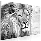 murando Bilder Löwe 135x90 cm - Leinwandbilder - Fertig Aufgespannt - Vlies Leinwand - 3 Teilig Wandbilder XXL - Kunstdrucke - Wandbild - Schwarz Weiß Tiere g-B-0075-b-g