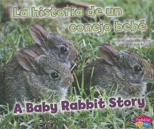 La Historia de un Conejo Bebe/A Baby Rabbit Story (Animales bebe/ Baby Animales) por Jeni Wittrock