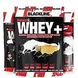 Blackline 2.0 Honest Whey Protein, 1000g, Geschmack:Haselnuss