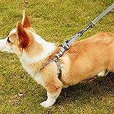 Happy Hachi Imbracature di Base con Cavezza Pettorina per Cani Reflective Facile da Usare per Camminare(M, Grigio)