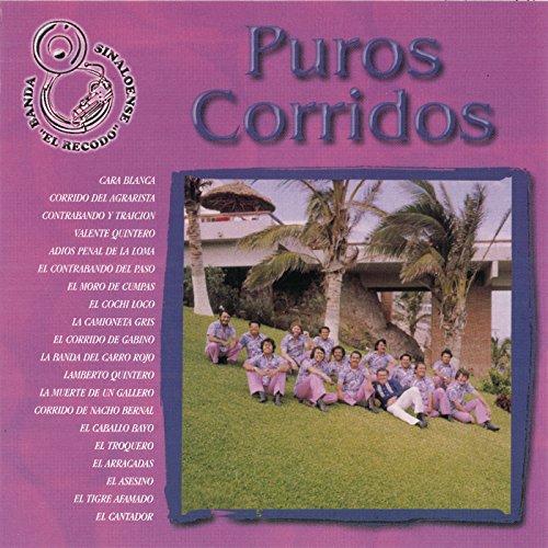 Puros Corridos (Banda El Recodo Corridos)