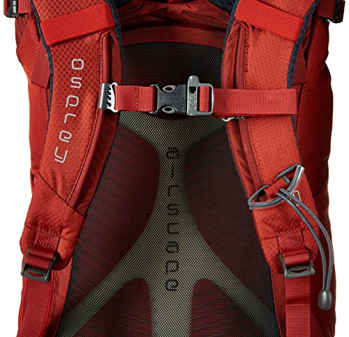 Osprey Kestrel 28 Trekkingrucksack M/L 0 dragon red