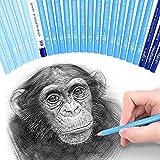 24 Skizze Bleistifte – Professionelle Kunst Skizzieren Bleistifte Set graphit & Holzkohle Bleistifte für Künstler Zeichnen Shading
