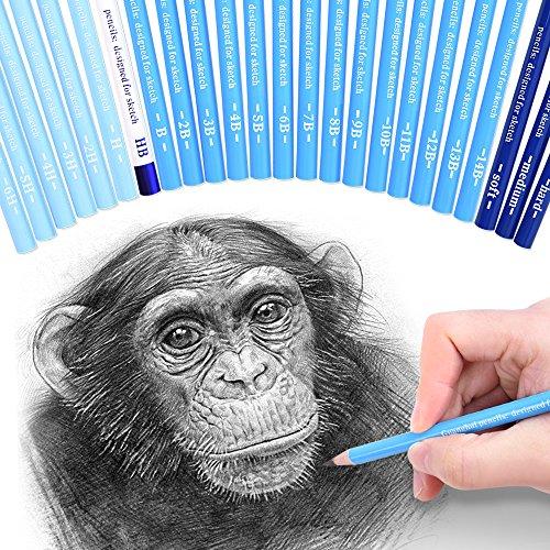 Bleistifte Holzkohle Skizzieren (24 Skizze Bleistifte – Professionelle Kunst Skizzieren Bleistifte Set graphit & Holzkohle Bleistifte für Künstler Zeichnen Shading)