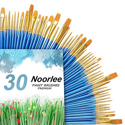 noorlee Malerpinsel-Set, 30 Nylonhaarpinsel für Acryl, Öl, Aquarell, Malerei, Künstler, professionell, 3 Stück (Kamm Und Pinsel-set)
