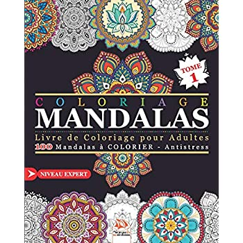 Coloriage Mandalas: Livre de Coloriage pour Adultes - 100 Mandalas à COLORIER - Antistress - Niveau Expert - Tome 1