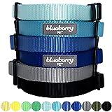 Blueberry Pet Hundehalsband Klassisch Einfarbig 2 cm M Basic Polyester Nylon Hundehalsband Langlebig - Flint Grau