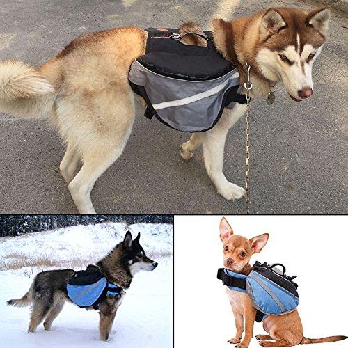 quanjucheer Hunde Tasche Rucksack, verstellbar, Haustier-Transportbox mit Taschen für Reisen, Wandern, Camping