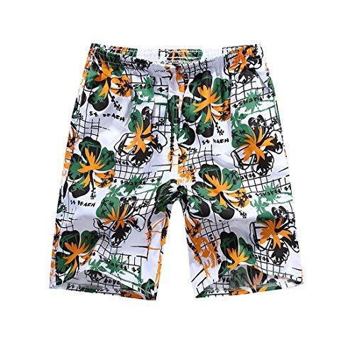 Honeystore Herren Strand Shorts Schnell Trocknend Schwimmhose Surfen Shorts Sommer Boardshorts One Size HS01 (Hurley Boxer)