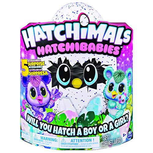 Hatchimals - 6046470 - HatchiBabies Kitsee, Ei mit Baby-Hatchimal und interaktiven Accessoires -