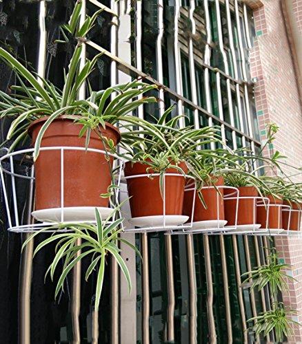 Im Freien Kraut Blumen Pflanze steht 10 Stück Blumentopf Rack Balkon Geländer Hängen Bonsai Rahmen Eisen Wand hängende Blume Rack Im Freien Kraut Blumen Pflanze steht ( Farbe : A - Im Stand Hängende Freien Pflanze