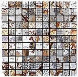 Mosaik Fliese selbstklebend Aluminium silber metall Weltkarte Silber für BODEN WAND BAD WC DUSCHE KÜCHE FLIESENSPIEGEL THEKENVERKLEIDUNG BADEWANNENVERKLEIDUNG Mosaikmatte Mosaikplatte