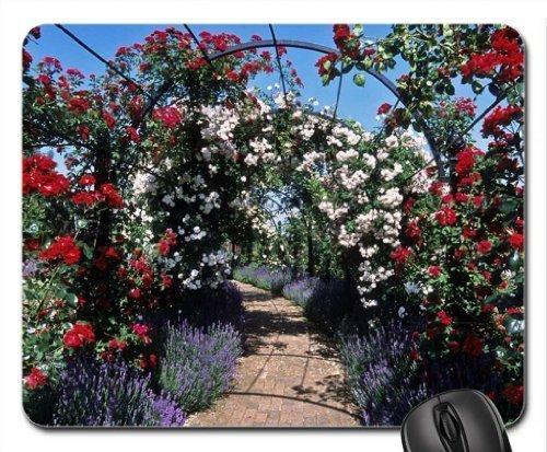 Rose verdeckt Pergolas Mauspad, Mousepad (Blumen Mauspad)