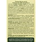 LAngelica-Tisana-Regolarit-in-Capsule-2-Confezioni-24-g