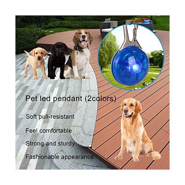 Top Munster Waterproof SpotLit Cat/dog Collar Light,LED Pet Safety Light Luminous Pendant for Outdoor Safety 8